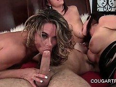 Mature sex queens showing deep throating skills in 4some